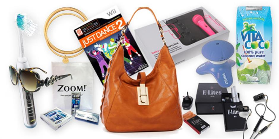 Image showing the contents of the 2011 Goodie Bag